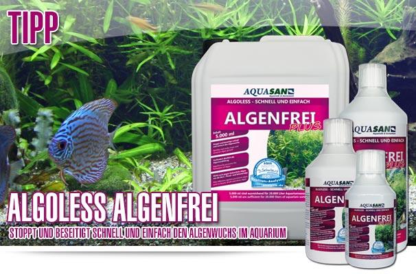 Aquasan aquality shop f r aquaristik und for Gartenteich algenfrei