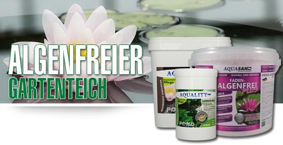 Tipps von AQUALITY für eine algenfreien Gartenteich