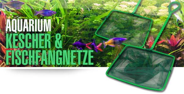 AQUALITY Aquarium - Kescher & Fischfangnetze