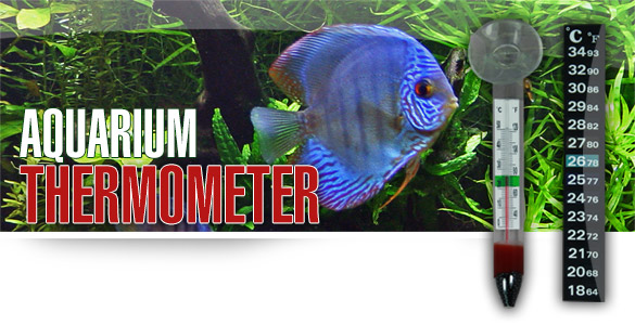 AQUALITY Aquarium Thermometer - Glas & Digital