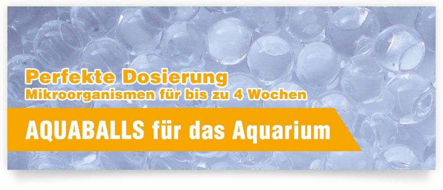 AQUABALLS für Ihr Aquarium - Jetzt bis zu 4 Wochen Mikroorganismen