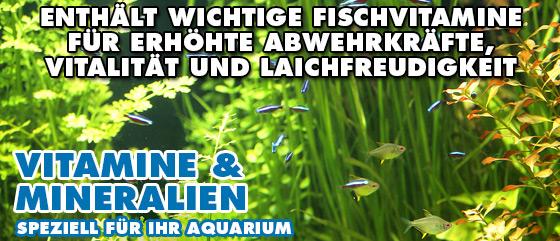 AQUALITY Vitamine & Mineralien für Ihr Aquarium