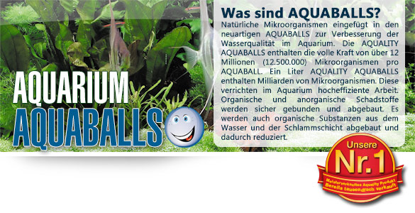AQUABALLS für Ihr Aquarium - Einfach und zeitsparend dosieren