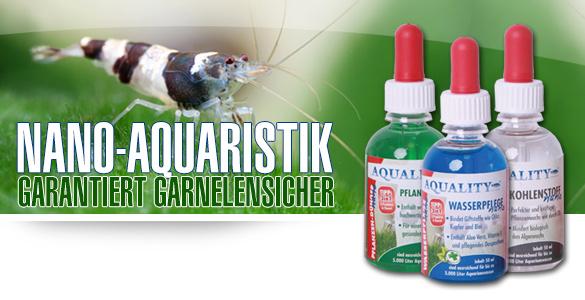 nano-Aquaristik jetzt bei AQUALITY - Garantiert Garnelensicher